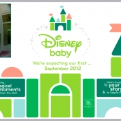 Disney Baby Barricade